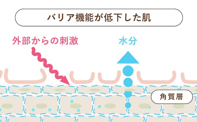 水分が肌から出ていき乾燥することでバリア機能の低下を招く。引用:エスエス製薬HP