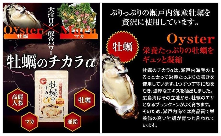 メンズおすすめ亜鉛サプリ:hoconico 贅沢亜鉛 牡蠣のチカラα