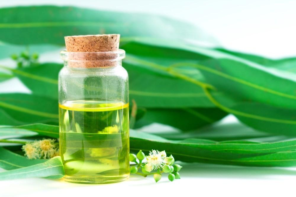 ユーカリエキスは保湿効果に加えて「しわの抑制」などエイジングケアに有効